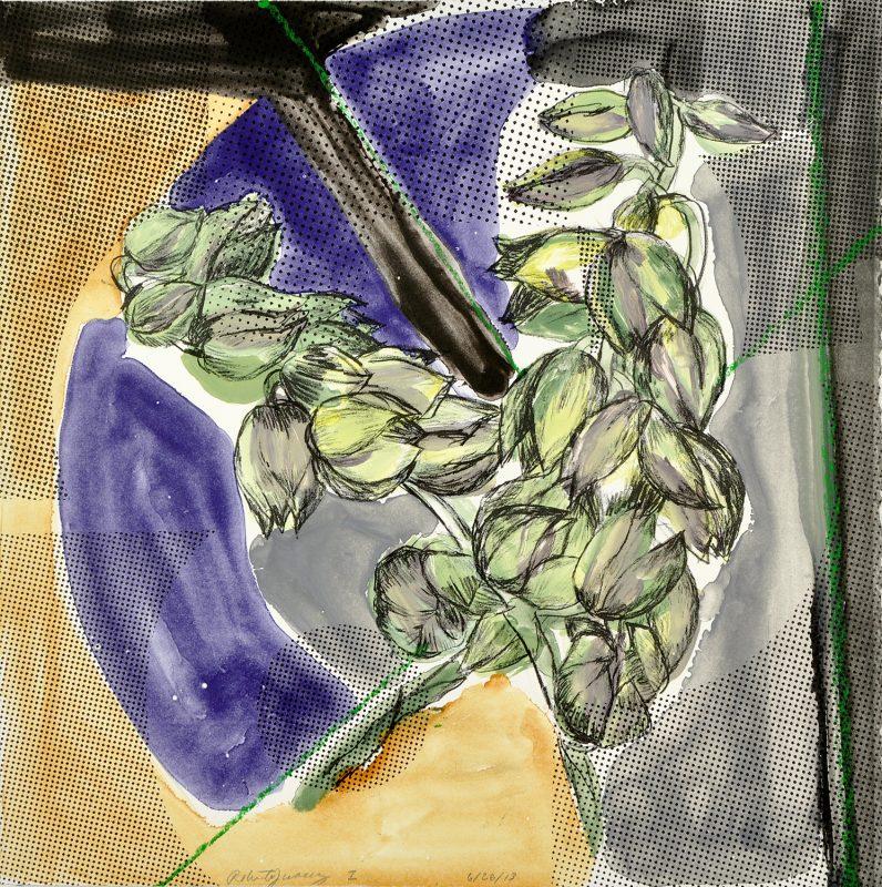 """""""Yucca Bloom I"""""""